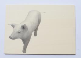 Holzpostkarte Ferkel 003