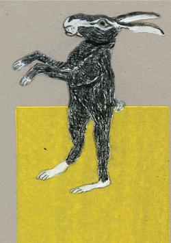 Postkarte Illu Esel