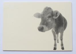 Holzpostkarte Rind 008