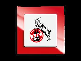 Busch Jaeger Wechselschalter - FAN Schalter - 1.FCK
