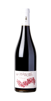 Les Marcel Gamay (2020)