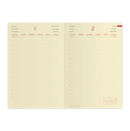 Quo Vadis Kalender 2020 Daily 24 - 16x24cm
