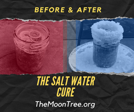 2 Salt Water Cures