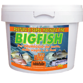 ANTICHE PASTURE BIG FISH 3KG