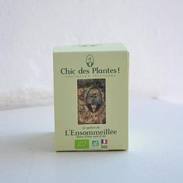 NOUVEAU L'Ensommeillée by Chic des Plantes !