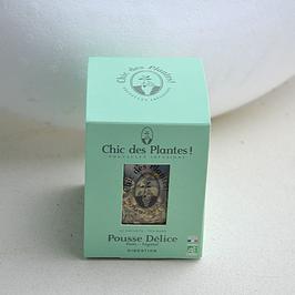 NOUVEAU Pousse Délice by Chic des Plantes !