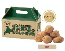 【最安値】大地の恵み北海道産じゃがいも800g男爵いも 298円×40箱【送料無料】