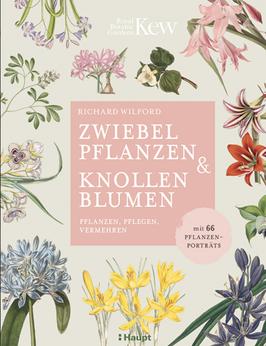 Zwiebelpflanzen & Knollenblumen