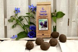 """Seedballs """"Blaues Wunder"""""""