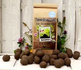 Seedball Baukasten