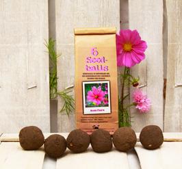 """Seedballs """"Rosa Flora"""""""