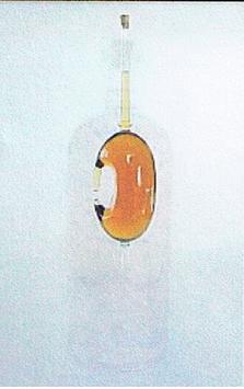 "Flasche ""Nase"" 0,850 L. Höhe ca 5400 mm"