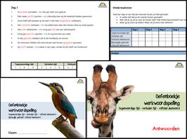 Oefenboekjes werkwoordspelling voor de bovenbouw (groep 7/8)
