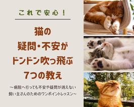 ■5/2(日):オンライン・ワンデイセミナー