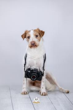 Bildcoaching für Anfänger in der Fotografie und Social Media Nutzung