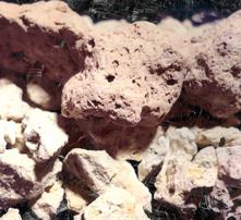25 kg Zeobakterlith