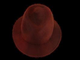 Hut und Robe Trilby rostbraun 100% Haar
