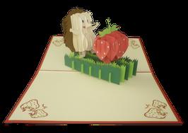 Hérisson et sa fraise