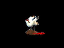 Oiseau 011018