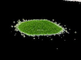 Sable Vert Lotus (220g environ)