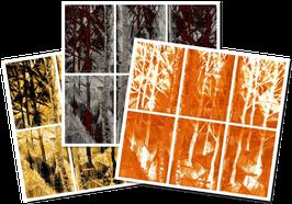"""serie """"REMIXED"""" - """"trittico del bosco"""" completo"""