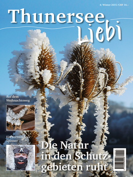 ThunerseeLiebi Nr. 4, Winter 2015