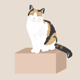 Individual Illustration of your cat - PDF file