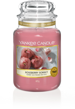 Roseberry Sorbet Large Jar