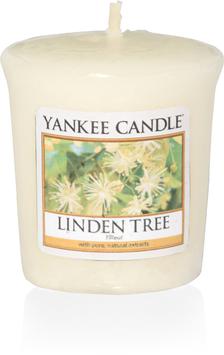 Linden Tree Votive