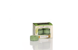 Vanilla Lime Tealights