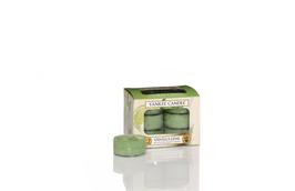 Vanilla Lime Tealights