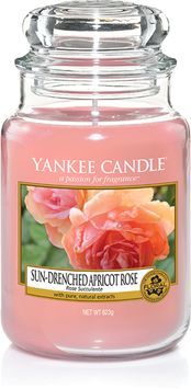 Sun-Drenched Apricot Rose Large Jar