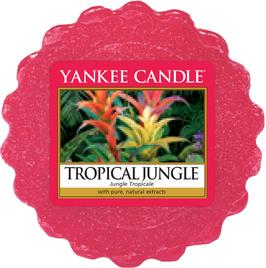 Tropical Jungle Melt