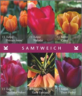 Samtweich