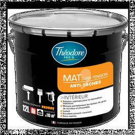 Peinture Mat sans tension Anti taches spéciale plafonds & murs tachés ou abimés  THEODORE PRO G