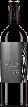 Atteca, ein Spanier mit Klasse und Energie