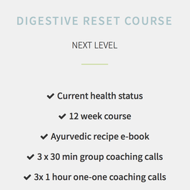 Digestive Reset Next Level