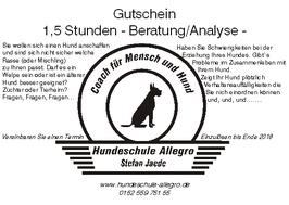 Gutschein: Beratung / Analyse