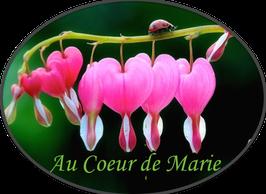Au Coeur de Marie