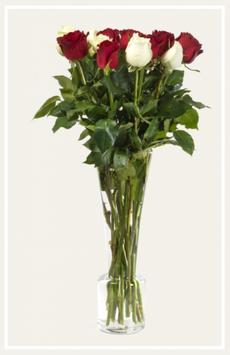 Les Grandes roses