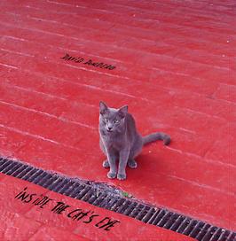 Internatioanl orders for Inside The Cat's Eye full length vinyl LP with download card