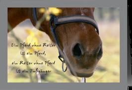 """GrußkartePferd  """"Ein Pferd ohne Reiter ist ein Pferd, ein Reiter ohne Pferd ist ein Fußgänger"""""""