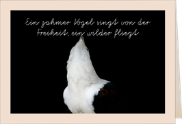 """Grußkarte """"Ein zahmer Vogel singt von der Freiheit, ein wilder fliegt"""""""