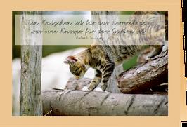 """Grußkarte Pauline auf dem Baumstamm """"Ein Kätzchen ist für das Tierreich das, was eine Knospe für den Garten ist"""""""