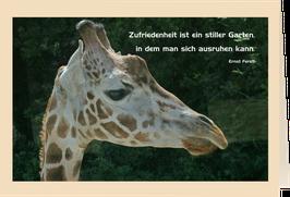 """Grußkarte Giraffe """"Zufriedenheit ist ein stiller Garten, in dem man sich ausruhen kann"""""""