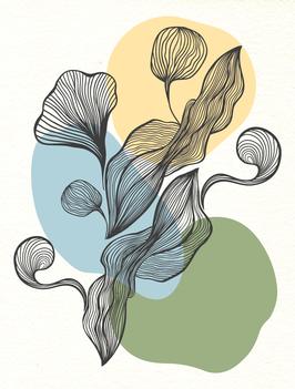 Affiche Style Line Art Vegetal 7