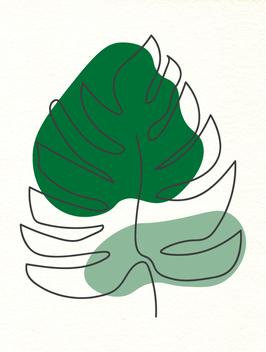 Affiche Style Line Art Vegetal 9