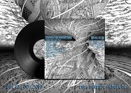 WOJCZECH / COMPLETED EXPOSITION                                               SPL  LP                               BLACK VINYL