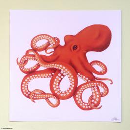 """Druck """"Octopus"""""""
