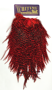 Whiting American Hackle Rooster Saddle